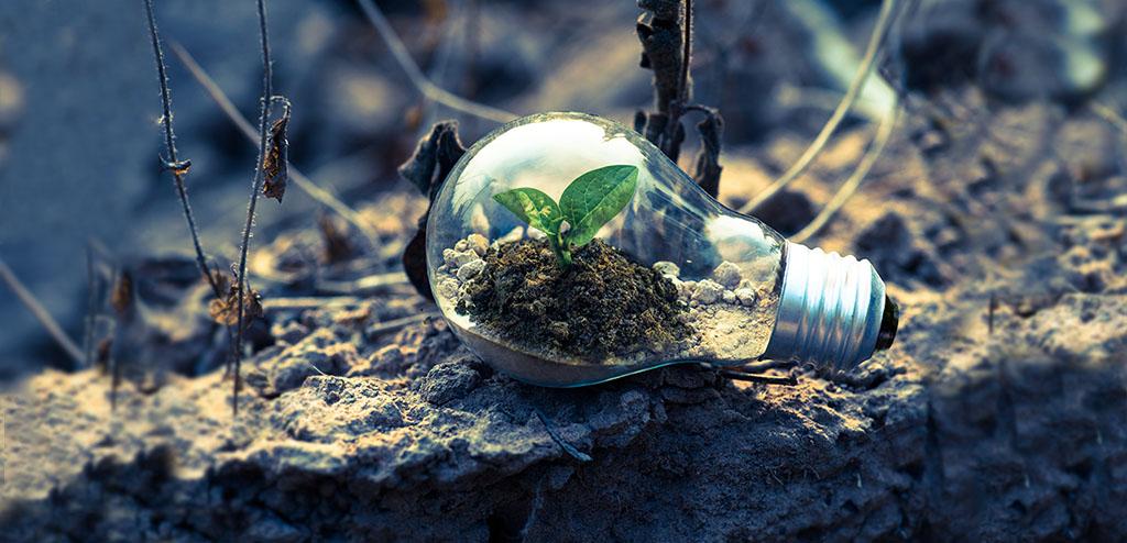 Light bulb on earth