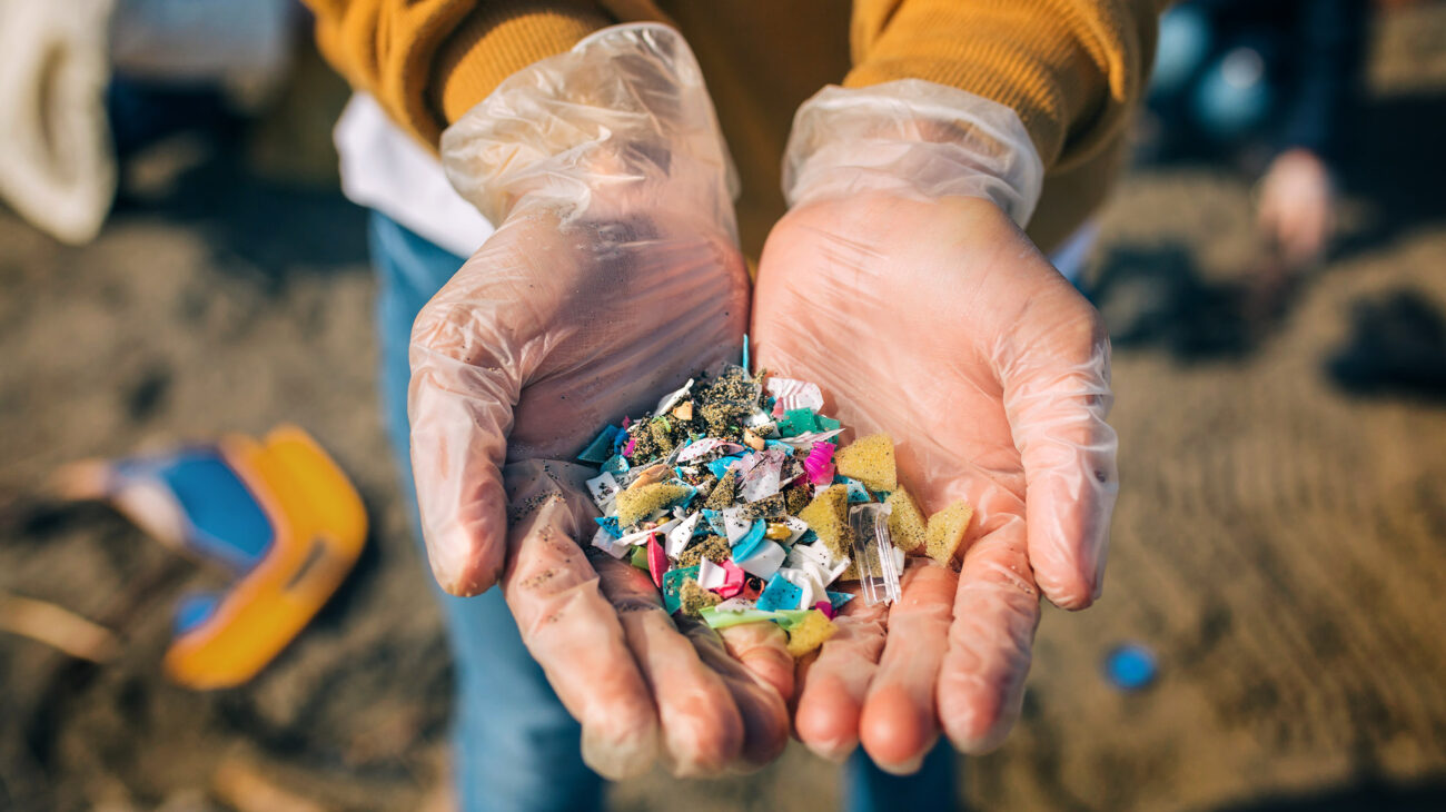 Broken up plastic collected from the ocean