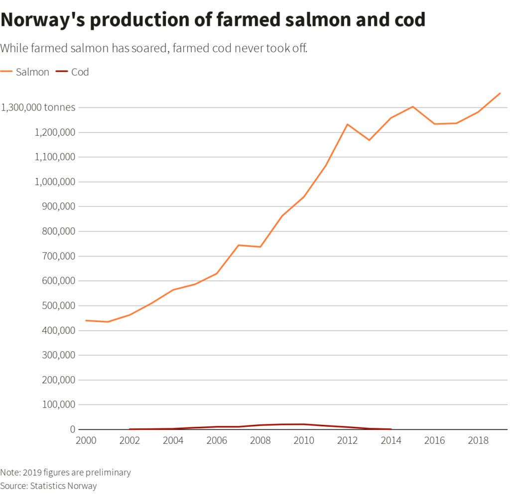 Chart showing Norway's production of farmed salmon and cod