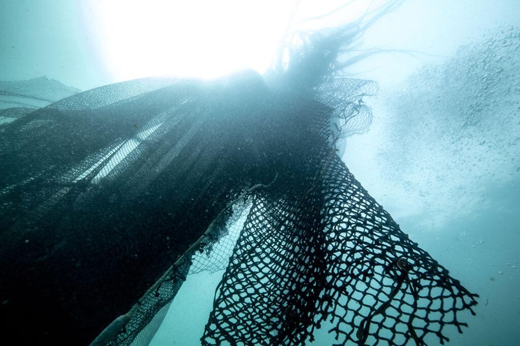 Volta Bureo Ocean nets