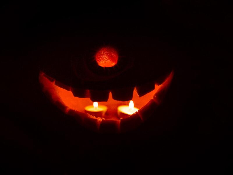 Volta Pumpkin Feature