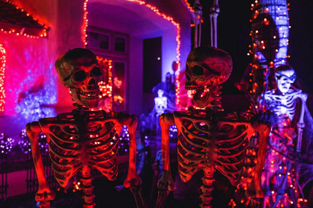 Volta Skeletons