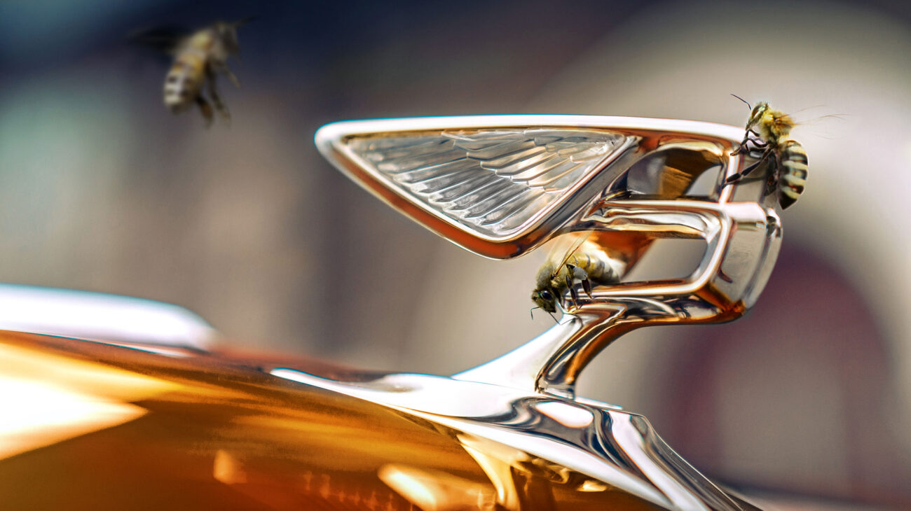 Volta Bentley Carbon Neutral