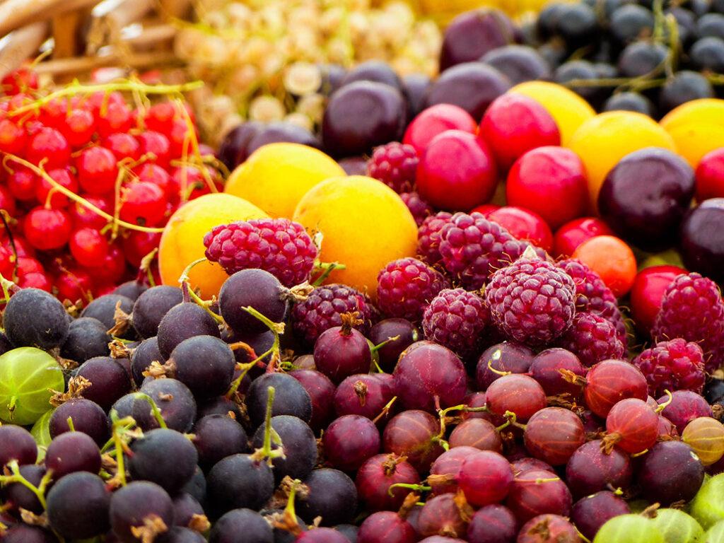 Seasonal Fruits British