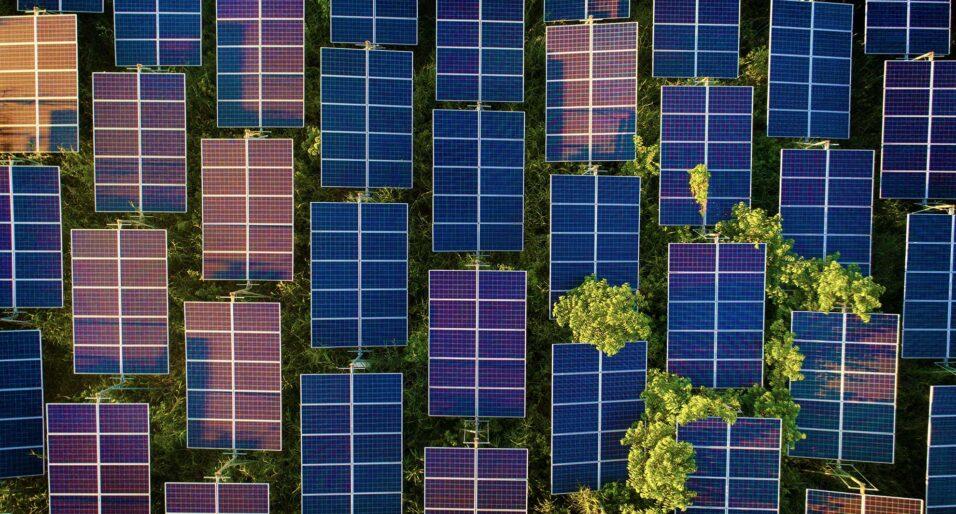 Volta Solar Panels