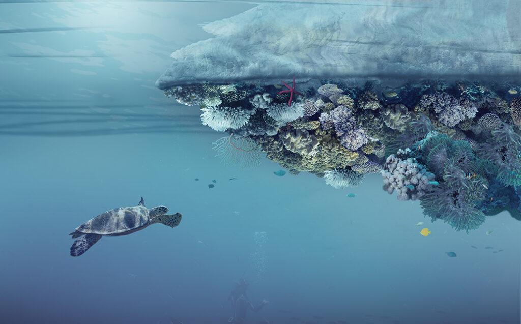 Volta Sweep Island