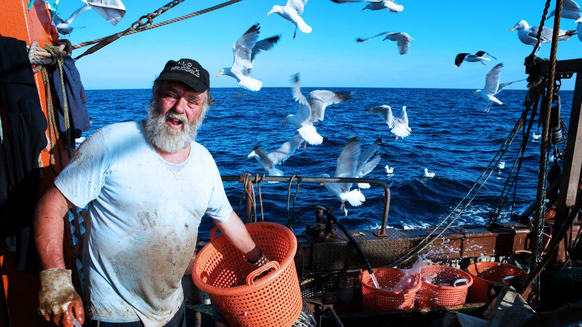 UK fishing industry eyes up more sustainable catches