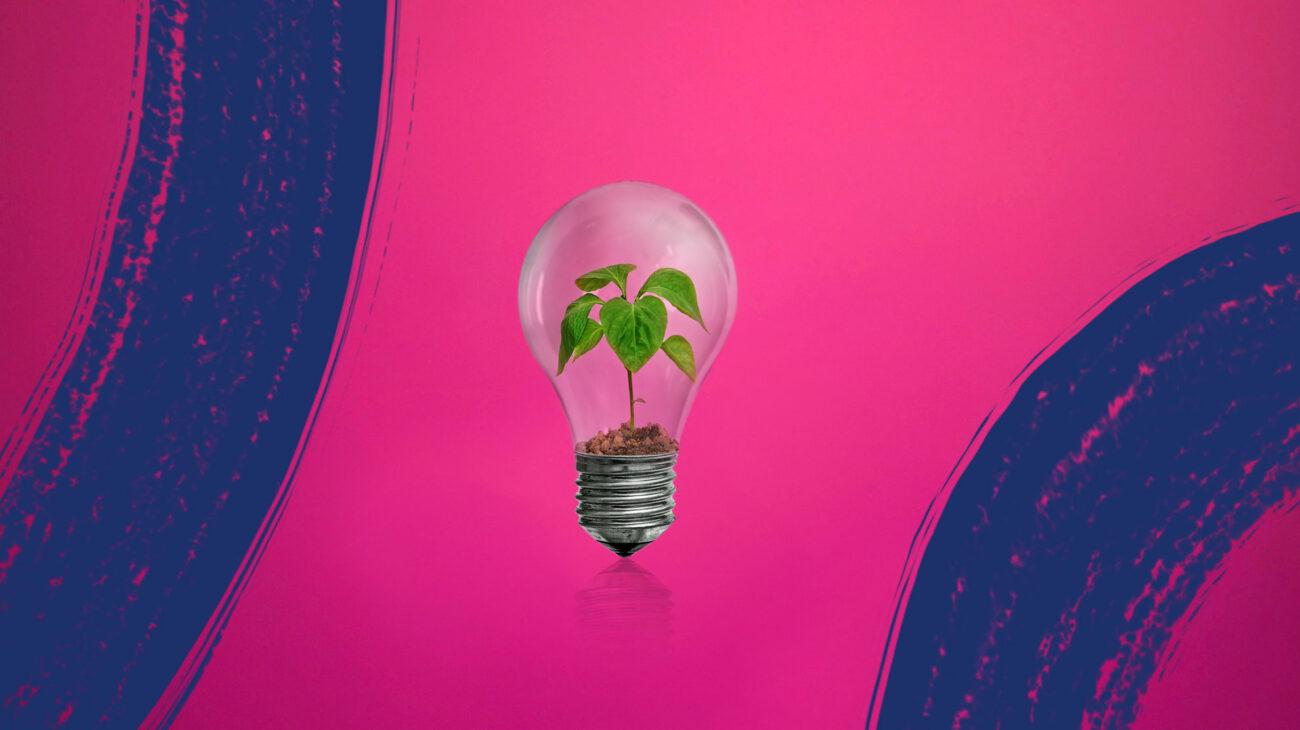 Volta Bulb Feature