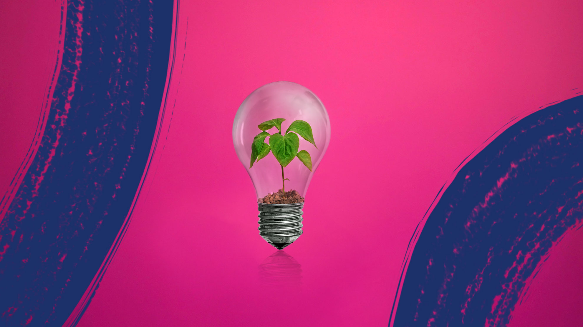 Bulb shares green energy-saving tips for households