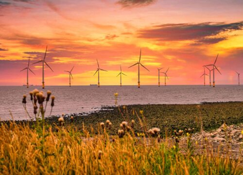 A wind farm off the coast of the UK